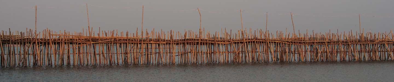 Pont de bambou sur le Mékong au Cambodge, Frangipanier artisanat des villages