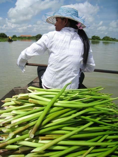 Artisanat authentique et équitable, récolte de la jacinthe d'eau dans un village du Cambodge